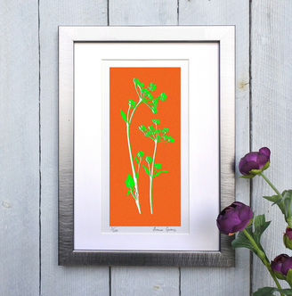 Cow Parsley print Orange and Green framed
