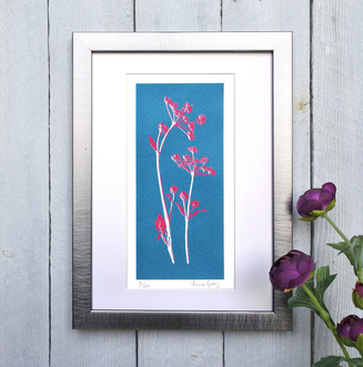 Cow Parsley print Teal and Magenta framed