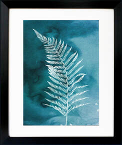 Cyanotype effect Fern print by Fiona Gray