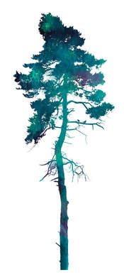 Tree silhouette in Greens & Blues