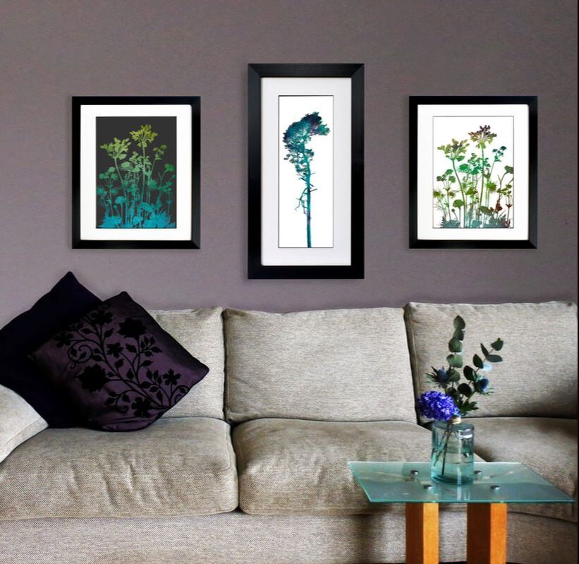 Agapanthus & Bellingham Tree prints by Fiona Gray