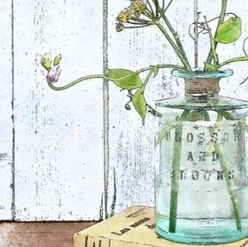 Fennel & Sweet Peas displayed in a glass bottle,  watercolour effect illustration, detail