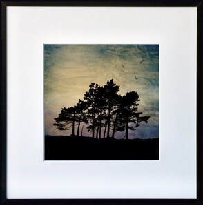 Fiona Gray tree silhouette print Purple Dawn
