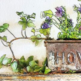 Delightful ink & watercolour effect illustration featuring a vintage Hovis tin planted with Viola & Ivy in situ on a wall