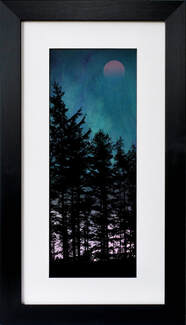 Trees at Dusk 2 fine art print by Fiona Gray. Pine tree silhouette against a dramatic Turquoise & Purple background , with the moon faintly showing